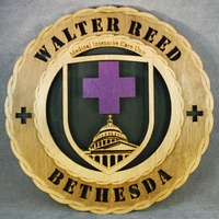 Walter Reed Medical Intensive Care Unit Wall Tribute - Click Image to Close